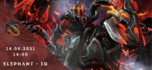Elephant - Invictus Gaming-14-08-2021