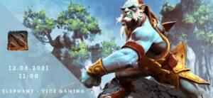 Elephant - Vici Gaming-12-08-2021